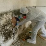 All About Water, Fire and Mold Restoration Services